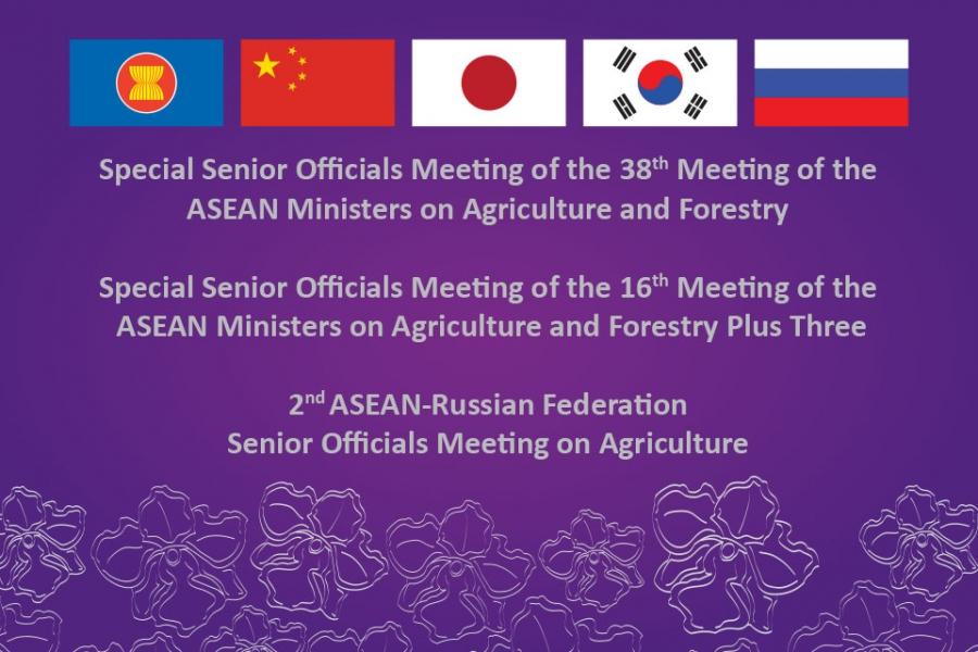 Asean Plus Three & Russian Federation Meetings on Agriculture & Forestry